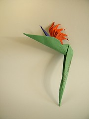 Bird of Paradise - Meenakshi Mukerji (Rui.Roda) Tags: origami papiroflexia papierfalten flor fleur flower ave do paraíso bird paradise meenakshi mukerji