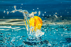 Drop (brianpoanlin) Tags: california ca usa sunlight water pool speed ball studio photography frozen backyard nikon san photographer baseball action flash jose young fast snap shutter instant daytime softball splash quick sudden d90 sb910