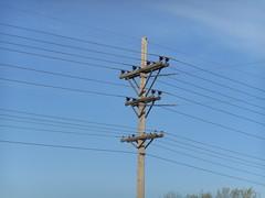 Montana-Dakota Utilities - Mandan, ND [Explored] (NDLineGeek) Tags: explored 12500v 41600v mdu