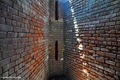 Fort Totten Henge (Trish Mayo) Tags: light sunlight fort bricks brickwalls forttotten militaryarchitecture thebestofday gnneniyisi
