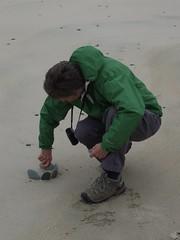 A dull day at the beach (nz_willowherb) Tags: scotland sand flickr shetland tombolo stniniansisle visitshetland seeshetland goptoshetland