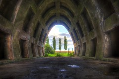 tunnel view (paddy_c.) Tags: trees texture landscape vanishingpoint poplar view tunnel hdr paddyc