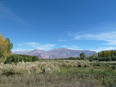 Somewhere in between Mendoza and Puente del Inca