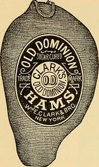 Anglų lietuvių žodynas. Žodis round clam reiškia raundas moliuskas lietuviškai.