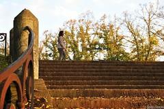 • Piazzale Medaglie D'Oro: dettaglio (viburnum248) Tags: autumn scale architecture foglie stairs walking pattern geometry ferrara mura leafs autunno geometria geometrie scalinata muraestensi