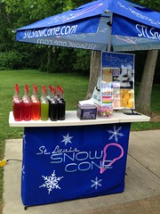 "St. Louis Snow Cone • <a style=""font-size:0.8em;"" href=""http://www.flickr.com/photos/85572005@N00/14803691232/"" target=""_blank"">View on Flickr</a>"