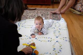 Henry Ready to Crawl