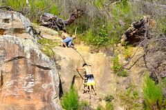 Cliff Jumping (DealNews) Tags: cliff lake water jump jumping alabama smith deal cliffjumping smithlake deals bestdeals dealnews dealnewscom dealsnews dealsnewscom