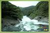 Silent Valley---------------16 (Binoy Marickal) Tags: india green tourism nature water rain kerala mala palakkad evergreenforest treaking silentvalleynationalpark nilgirihills mannarkkad mukkali kuzhur indiabinoymarickal