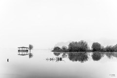 Pateira de Fermentelos (Paulo_Veiga) Tags: trees bw white lake black tree portugal nature water monochrome gua fog composition reflections river de relax landscape geotagged photography flickr mood quiet foto natureza picture pb paisagem preto minimal serenity fotografia minimalism geotag reflexos aveiro rvores monocromtico riverscape reflectionsonwater pateira fermentelos pauloveiga lens18200mm canon550d eosrebelt2i canonlens18200mm