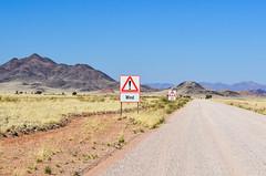 Cycling the C27 gravel road in southwest Namibia (jbdodane) Tags: c27 africa bicycle cycletouring cycling cyclotourisme day625 desert gravel namibdesert namibia road roads sign velo wind freewheelycom jbcyclingafrica