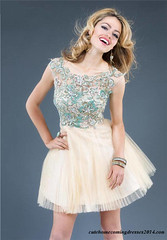 Champagne Embroidery High Neck Short Dresses Jovani 89252 (smithgable987) Tags: champagne homecomingdress jovani89252