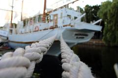 Tied up (t.jakubauskas) Tags: sea summer blur closeup canon sailing ship sail ropes klaipeda lithuania memel lietuva litauen nofilters litwa meridianas 700d