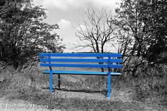 Blaue Bank am Wegesrand (bennithomas98) Tags: blue color field forest thomas feld bank benjamin blau wald farbe weg wegesrand sitzen ausruhen setzen sttigung entsttigt benni98 bennithomas98