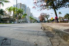 7K VTV Transbrasa 2014 (PauloFotografoSantista) Tags: street brazil sports dof running run santos vista rua ponto sportsaction esporte corrida momentos detalhes santoscity