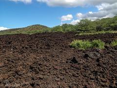 Maui-182 (Photography by Brian Lauer) Tags: maui kihei laperouse nakalelepoint laperousebay ahihikeanaureserve ahihikeanau