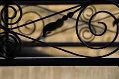 (FIRSTexpressions) Tags: newyork canada niagarafalls geese power or seagull niagrafalls ducks it niagara niagra believe clifton maidofthemist canadageese rainbowbridge horseshoefalls tablerock americanfalls cliftonhill niagaraglen skylontower niagarariver ontariocanada canadianfalls journeybehindthefalls summer first niagaraparks web petergordon of dickmann niagaraskywheel spider adams 69 bryan expressions notniagara niagaraparksystem firstexpressions guinessbookofworldrecordsmuseumripleys