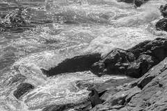 rocks, surf,  into the sun, below Gull Rock, Monhegan Island, Maine, Nikon D40, nikon nikkor 105mm f-4, 8.30.14 (steve aimone) Tags: ocean blackandwhite sun monochrome nikon rocks surf waves maine monochromatic foam nikkor f4 monhegan grays 105mm monheganisland intothelight gullrock primelens nikond40 nikonprime