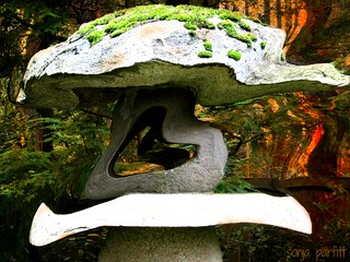 Japanese garden UBC