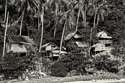 Island huts