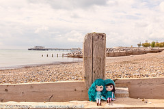 Blythes go to Worthing (Zoë Power) Tags: cute beach worthing doll teal kitsch kawaii blythe totebag punkaholicpeople