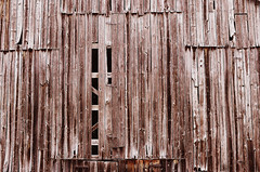 weathered (torn8o) Tags: canoneos3 fujivelvia barn barnboard weston missouri