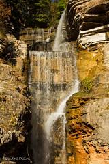 Waterfalls (Lindell Dillon) Tags: dogwoodcanyon branson misouri