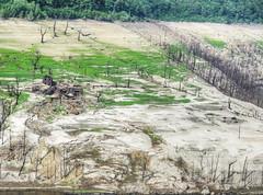BARRAGE DE SARRANS (CLAUDE ROUGERIE) Tags: barrage de sarrans