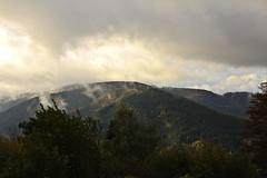IMG_7183 (hudsonleipzig80) Tags: schwarzwald blackforest natur nature outdoor badenwrtemberg autumn herbst fall tree baum bume prechtal oberprechtal trekking wandern mountains mountain canon canoneos1200d eos1200d eos 1200d