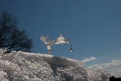 Verdammt... die Wasserleitung ist zugefroren! / Oh damn... the water conduit is frozen! (Lilongwe2007) Tags: winter schnee sonne stormarn schleswig holstein wasserhahn schneeschmelze trittau snow sun water conduit sculpture frozen funny