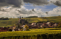 WIne and autumn... (Alex Switzerland) Tags: hunawihr alsace landscape wine vigneti weinberge autumn herbst autunno france francia canon eos 6d