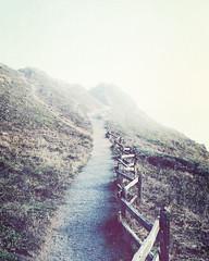 foggy trail (L. Grainne) Tags: pointreyes marincounty california lupengrainne landscape ocean fog mist