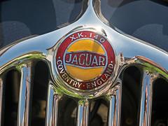 Jaguar XK 140 OTS (astroaxel) Tags: deutschland sachsen 11 classic jaguar xk 140 ots
