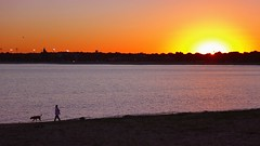 Sunset from Carson Beach, South Boston (brooksbos) Tags: brooksbos boston brooks dsctx30 tx30 evening geotagged landscape massachusetts newengland sony skyline sky sunset cybershot water southboston beach sand carsonbeach southie dog pet people