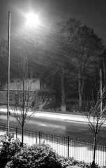 Wintry Scene (chrisroach) Tags: manchester greatermanchester england snow southerncemetery chorlton road storm snowstorm blowing grain streetlight moody