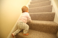 IMG_0687 (Yorkshire Pics) Tags: 0112 01122016 december 1stdecember december1st auburn littlegirl babygirl