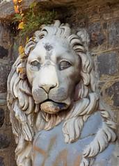 Lesser-Known Cousin (KaDeWeGirl) Tags: newyorkstate westchestercounty yonkers untermyer park lion sculpture edward clark potter