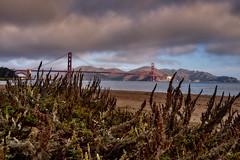 Golden Gate Bridge (AgarwalArun) Tags: sonya7m2 sonyilce7m2 sony sanfrancisco goldengatebridge goldengate bayareacalifornia iconicbridge pacificocean ocean bridge marincounty scenic views landscape fog marinelayer