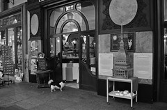 """Il Gianduiotto"" (giannipaoloziliani) Tags: ilgianduiotto monocromatico monochrome biancoenero blackandwhite cane dog animal sweet shop bar lunch windows local centre downtown italy turin torino italia vetrina aperipranzo street urba urbanstreet streetphoto streetphotography nikon nikoncamera nikond3200 piemonte centro citt pranzo buffet"