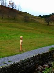 SCHWARZWALD IM HERBST (ehbub@yahoo.de) Tags: schwarzwald bach wasser wiese hang berg tannenbaum laubbaum bollenhutskulptur mauer herbst