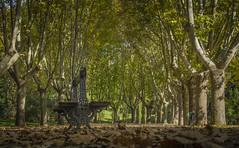 El Otono (pelpis) Tags: autumn autumnlandscape landscape loveslandscapes places madrid city cityscape paisaje lovesscene nature naturescene naturaleza naturephoto naturescape trees soledad love amor green yellow