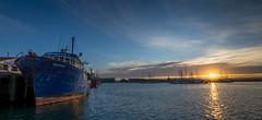 A good catch. (lizcaldwell72) Tags: sunburst fishingboat hawkesbay newzealand sunset napier water sky portahuriri light