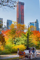 Central Park and Fall Colors (vern Ri) Tags: centralpark newyorkcity fall red yellow autumn nikon d750