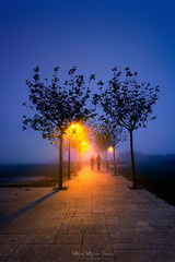 Paseo en la noche (Mimadeo) Tags: night street silhouette silhouettes dark walk light people urban park evening background person man lamp darkness lights way illuminated dusk streetlamp illumination streetlights midnight together gloom couple fog cold mist foggy misty getxo