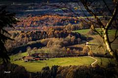 Nationalpark Bayerischer Wald (Nagorjan) Tags: bayerischerwald landkreisdeggendorf bayern deggendorf deutschland nagorjan natur grafling  de