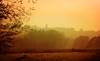 IMG_2211 sunset (pinktigger) Tags: fog mist fagagna feagne friuli italy italia landscape