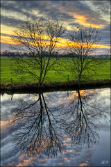 Tree reflections (Hetty S.) Tags: reflections sunset clouds sky canon eos hs hetty hettys holland meadows