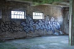 _DSC1409 (Under Color) Tags: leipzig graffiti lost places urban exploring leipsch walls