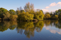 Reflections in the lake. (pstone646) Tags: lake trees reflections sky landscape nature ashford kent view sunshine