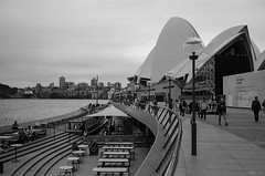 A dull day in Sydney a few weeks back. (i-lenticularis) Tags: 1250 fp4 leicam3 rewindphotolabdevscan summicron35f2v18element sydney f63 homerolled shot28oct2016